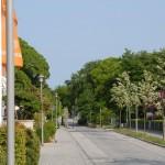 Dünenstraße nach Osten 1